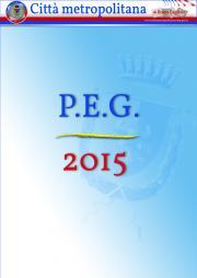 Piano Esecutivo di Gestione - P.E.G. - 2015